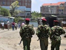 Police officers in Kenya injured following a grenade attack